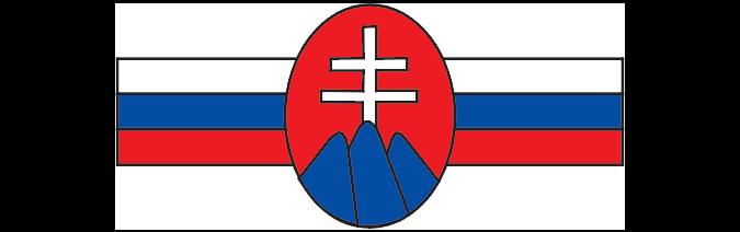 tsp logo flaga